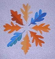 Oakleaves of different shades