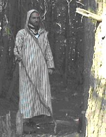 The archdruid in his robes amongst his trees