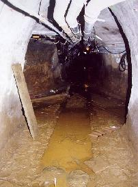 A slimy gross tunnel, just like under Carleton