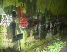 Graffitti covered wall of the tunnel