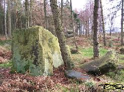 The rock in Saint Olaf's arb for the minister who died in the woods on that frigid day, name was slightly different.