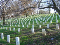 Arlington Cemetary near DC, picture by Mike, notice the arboreal beauty