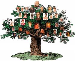 family tree of ancestors