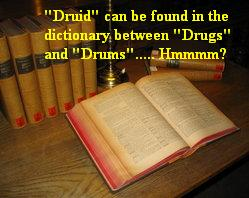Dictionary doesn't tell everything you need to know about Druids.