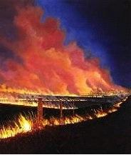 More prairie fire