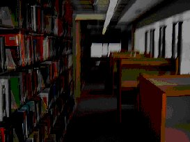 The creepy atmosphere of the unlit library at night.