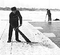 Interesting, you can take these large blocks of ice and make ice stonehenges on the lake, as they sometimes do at carleton.  If you pack the ice in straw and sawdust, the blocks might last until July or August.