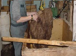 Multiple washes of the hide in a pickling bath.  They are heavy, so using a winch is good for lifting the stinky mess, and drying it afterwards.